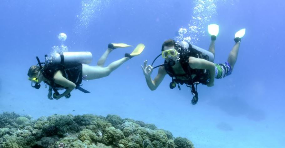 scuba-diving-day-tour