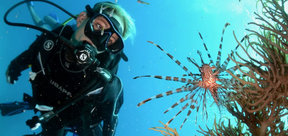 scuba-dive-trips