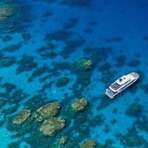 Silverswift Cairns Great Barrier Reef Tour